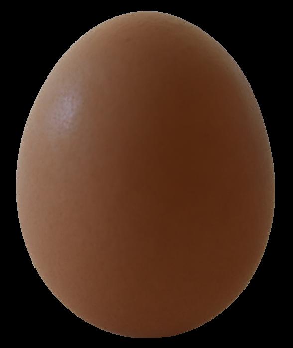 電子レンジなら茹で時間を気にせずに簡単にゆで卵を作れます
