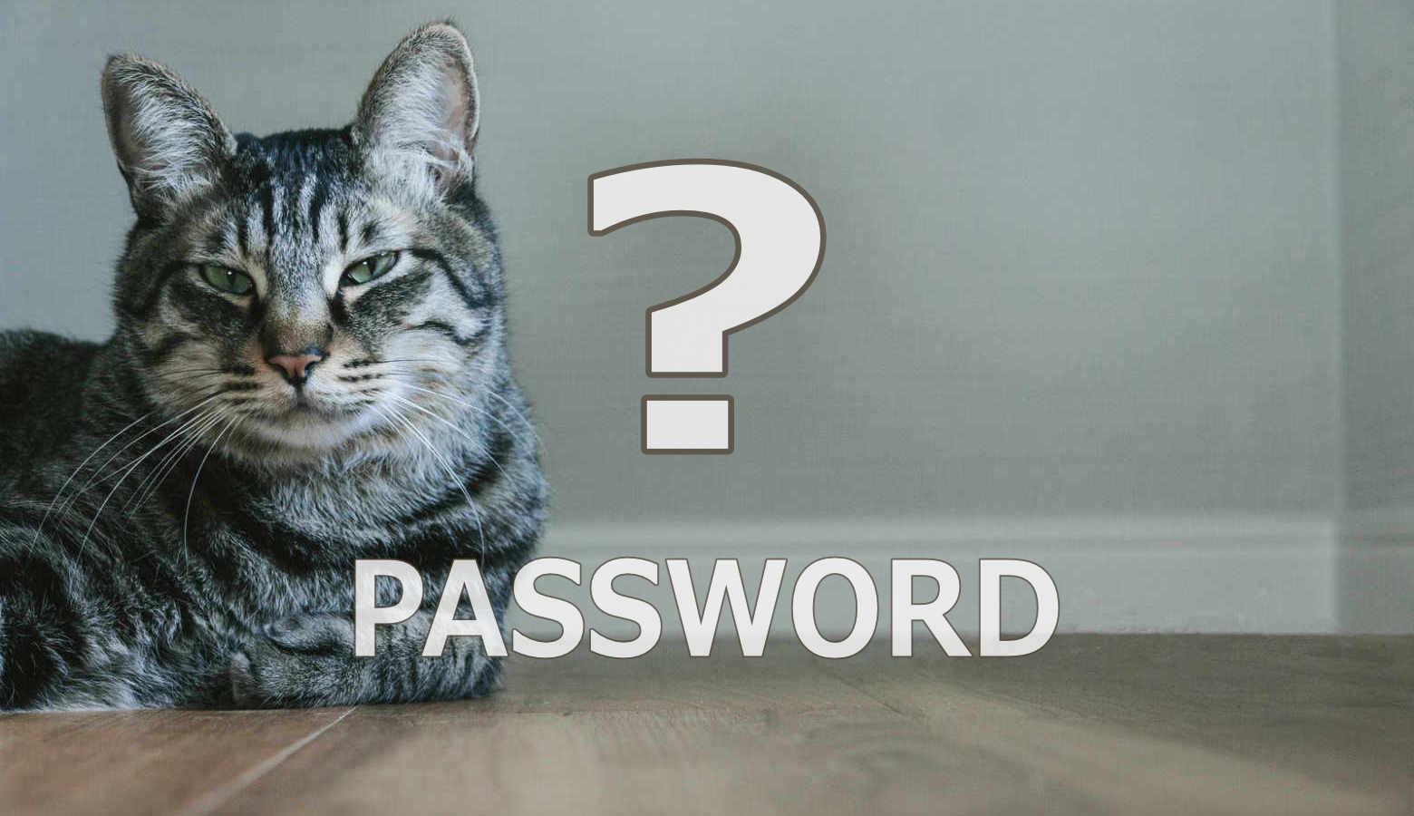 パスワードの管理方法:紙・アプリ・記憶のメリットとデメリット