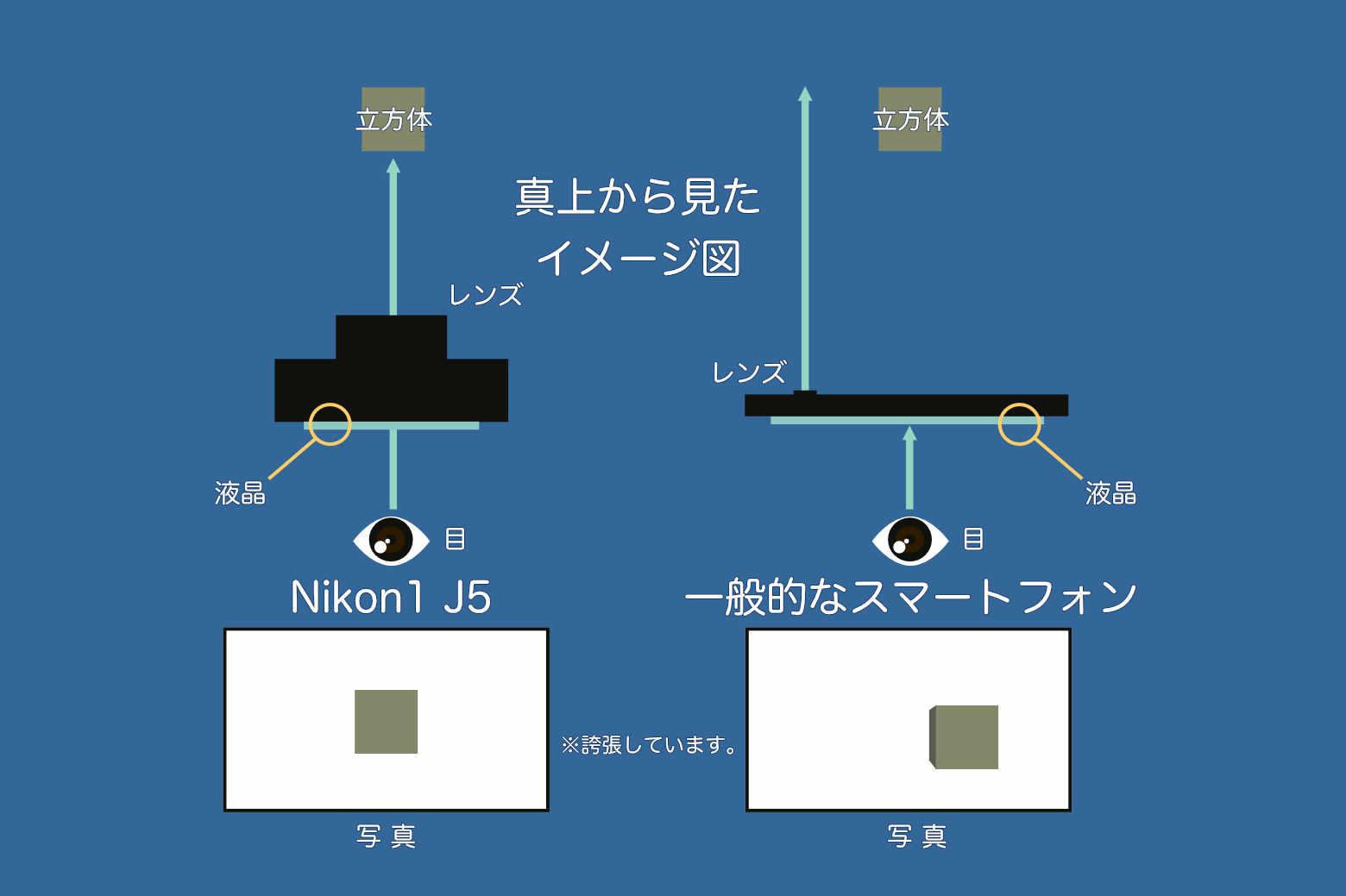 Nikon1J5の目線の位置