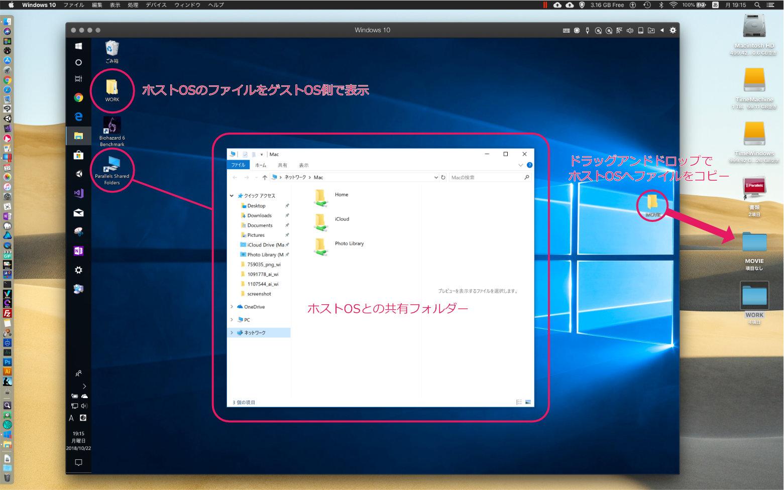 ParallelsDesktopのファイル共有